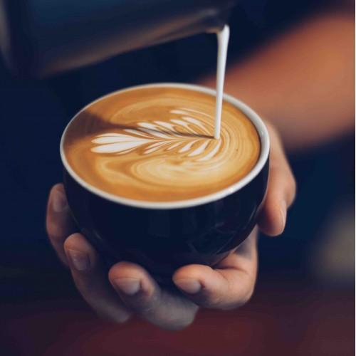 chai latte barista pic for website 500x500 1
